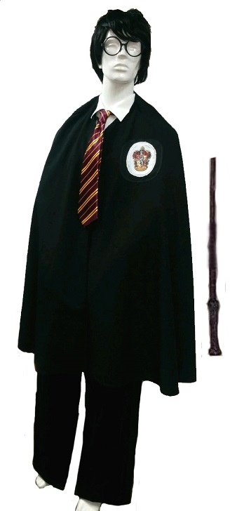 Harry Potter kit # 810